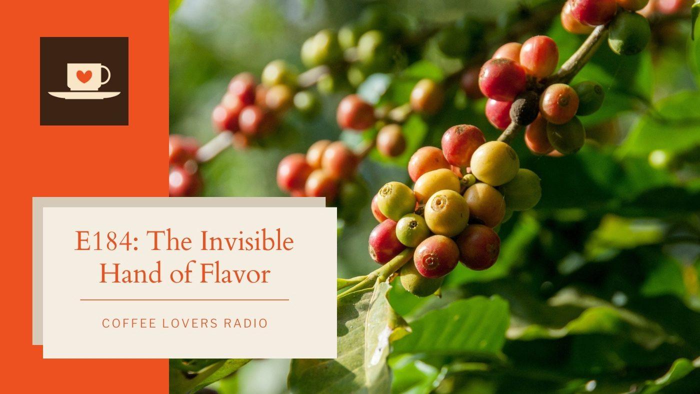 coffee processing - coffee lovers radio - coffee podcast